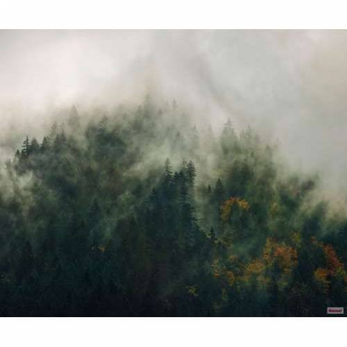 Foto tapeta Tales of the Carpathians PSH036-VD3 300x250h cm Cijena